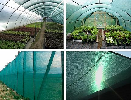 Регулирование освещенности растений при помощи сеток (тентов)