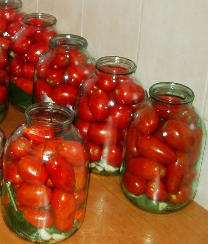 Переработка плодов томата